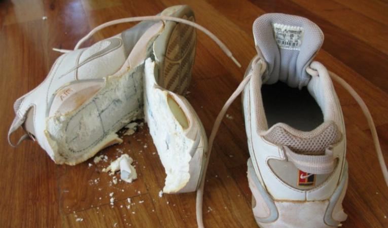 Порванные кроссовки
